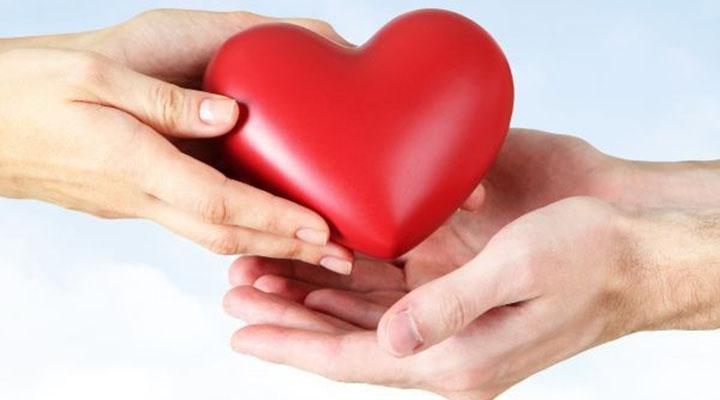 Mãos Solidárias - Entrega de Doações